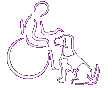 Irish Dogs for the Disabled